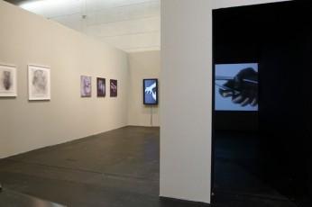 Art Cologne 2012 | Paweł Książek and Agnieszka Polska
